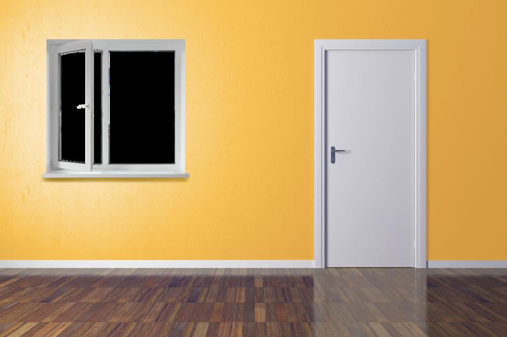 mayor seguridad puertas
